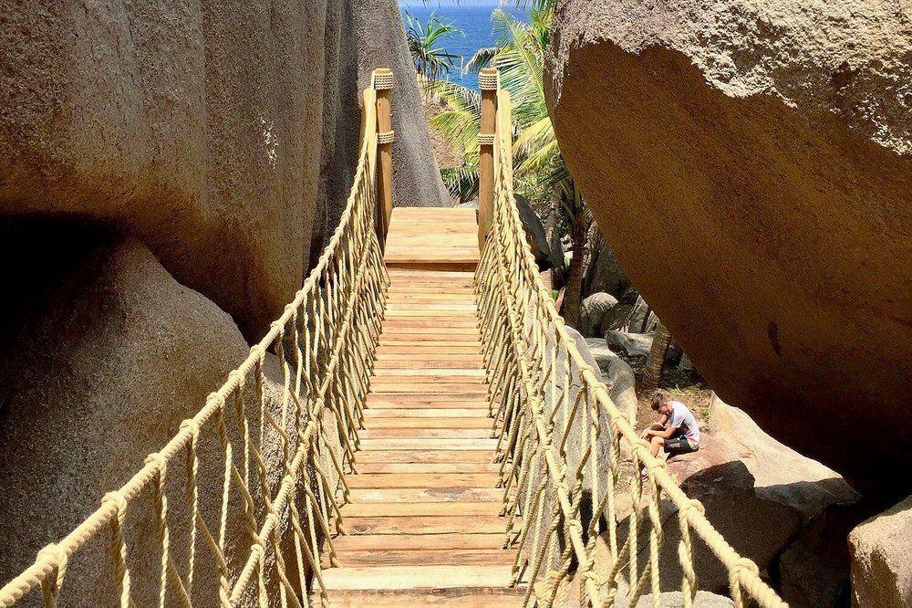 Treehouse Life Rope Bridge